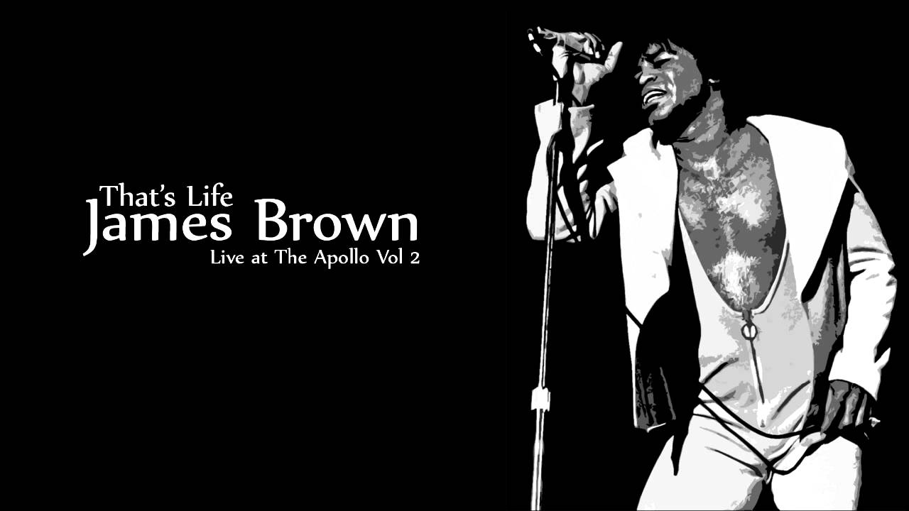 a paper on the life of james brown One of the proudest moments of my life, he told the reverend in 2004, was when you walked out at the democratic national convention with that james brown hairdo and brought james brown into.
