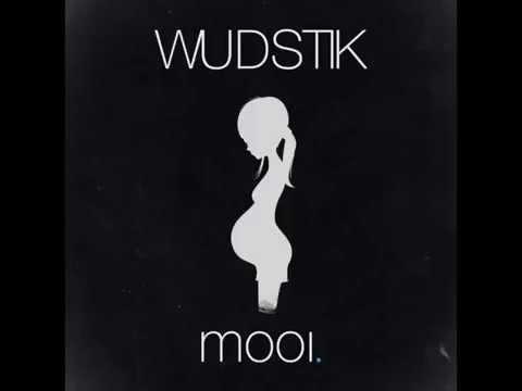 Wudstik - Mooi (audio)