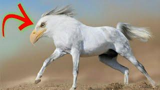 বিজ্ঞানীদের আবিস্কৃত 5টি অদ্ভুত প্রাণী!!/5 most amazing animals invented by scientists!!_AJOB 6