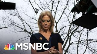 Kellyanne Conway's Media Missteps | AM Joy | MSNBC
