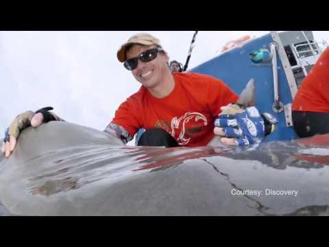 "James Sulikowski featured in ""Tiger Beach"" episode of ""Shark Week"""