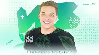 Wesley Safadão   Promocional novo Carnaval 2018