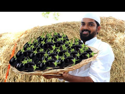 Brinjal Biryani for Orphans |Delicious Brinjal Biryani|Nawabs kitchen