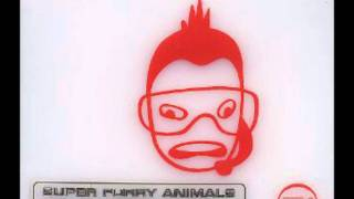 Watch Super Furry Animals Ice Hockey Hair video