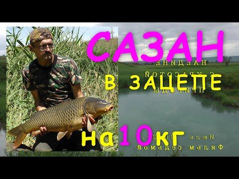 моя рыбалка июль 2016