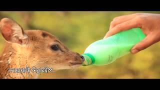 Nijhum Dwip (নিঝুমদ্বীপ)