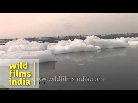 Toxic foam chokes Yamuna River - Delhi