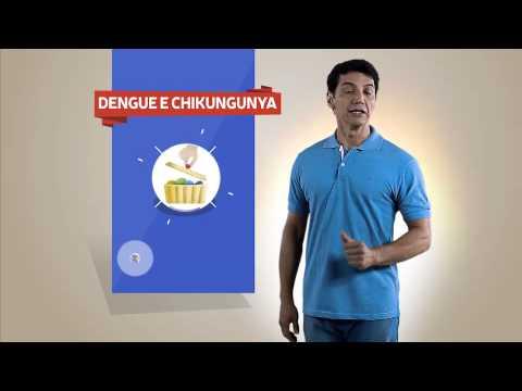 Dia D do combate aos mosquitos da Dengue e Chikungunya