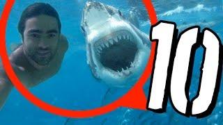 10 selfie zakończonych katastrofą [TOPOWA DYCHA]