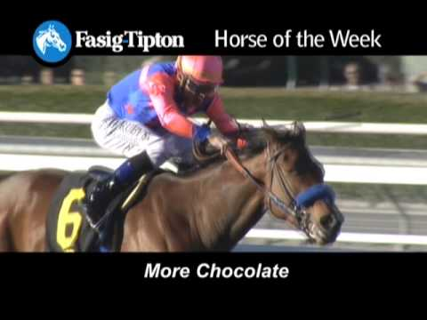Horse of the Week: More Chocolate!