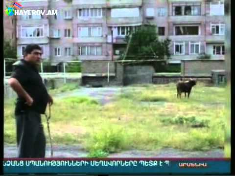 Clipzostojsiabcom - 11-nomreli-mekteb-gence-son-zenq-2013