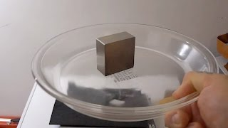 Simplicity Itself! Magnetic SHAKE to find a magnets polarity