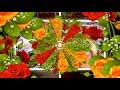 Переходы цветочные рамки, стили 2  ProShow Producer