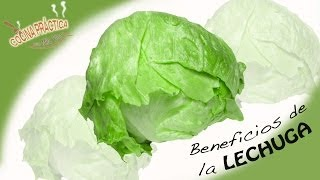 ♥ Beneficios de la LECHUGA ♥