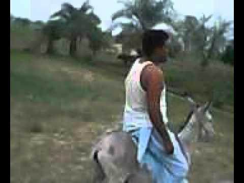 Amjad Khan Bloch Lashari on Donkey