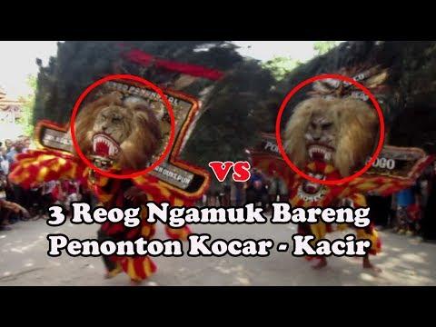 Reog Ponorogo Asli Ngamuk Bareng Bikin Merinding !!!