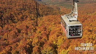 Towada-Hachimantai National Park, Japan 4K (Ultra HD) - ??????????