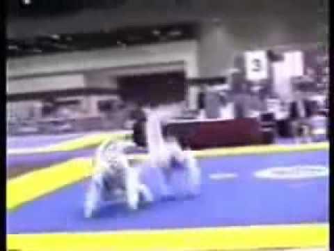 Taekwondo Knock outs