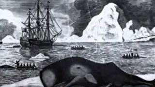 Greenland Whale Fisheries