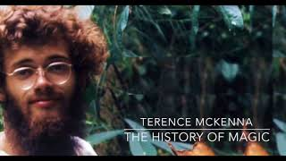 Terence Mckenna   The History of Magic Hermeticism & Alchemy 170620 4.38.31