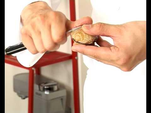 Technique de cuisine : Ouvrir des coquillages à cru