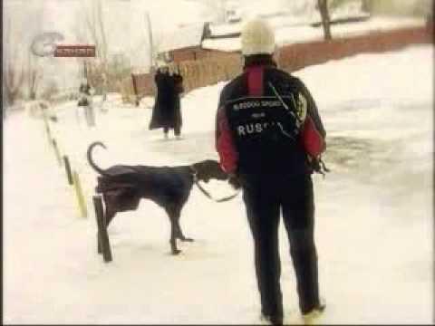 Зимние виды спорта.mp4