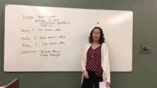 Informative Persuasive Essay