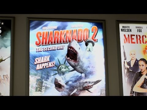 Vampires, Puppies, and Sharknado 2: The Cannes Film Festival's Movie Market
