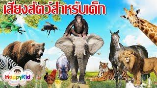เสียงสัตว์ 30 ตัว สำหรับเด็ก ภาพจริง ชัดมาก จำง่าย | เรียนรู้ชื่อและเสียงของสัตว์ | Animal Sounds