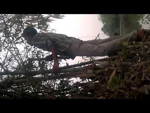 Bangla 3x video