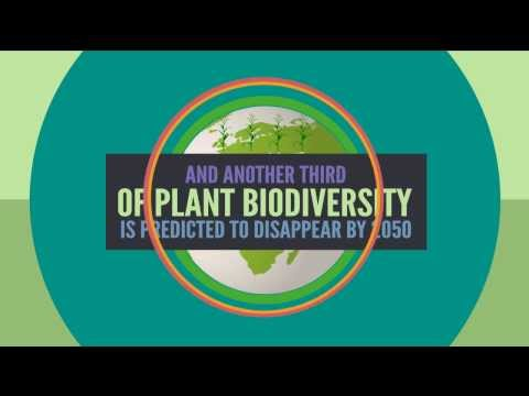 Humans NEED and EAT Biological Diversity!