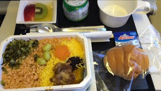 ANA   Flight Experience NH8 Tokyo Narita to San Francisco