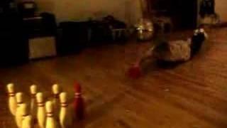 deadmau5 skateboard bowling?