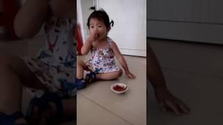 Thanh an cay la day(xoai chua cham muoi ot cap do10)