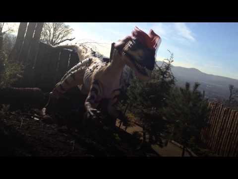 Edinburgh Zoo Keepers perform the Dino Funk!