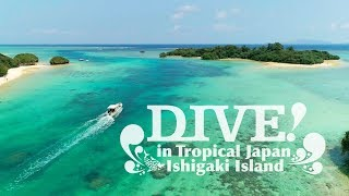 DIVE IN ISHIGAKI | What to do in Ishigaki | Dive in tropical Japan