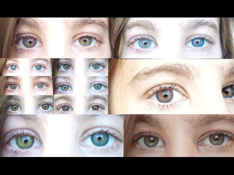 Colored Contacts: New Shortened Video - 12 Freshlook Lens Colors - Review