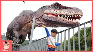 Dinosaur outdoor playground kids family fun play toy! Dinostar | MariAndKids