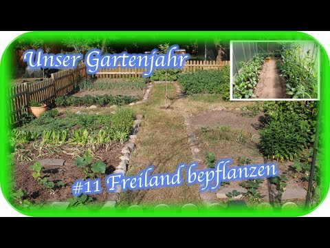 Unser Gartenjahr 10 Gewachshaus Bepflanzen Engelchen