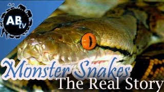 download lagu Monster Snakes, The Real Story: Snakebytestv : Animalbytestv gratis