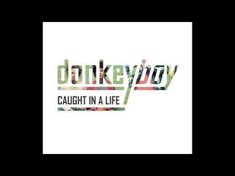 Donkeyboy - Awake