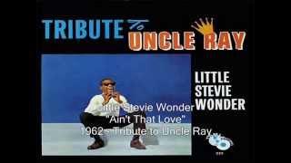 Watch Stevie Wonder Ain