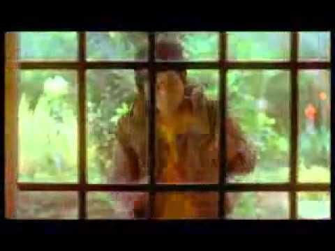 Acha Irwansyah - MY HEART