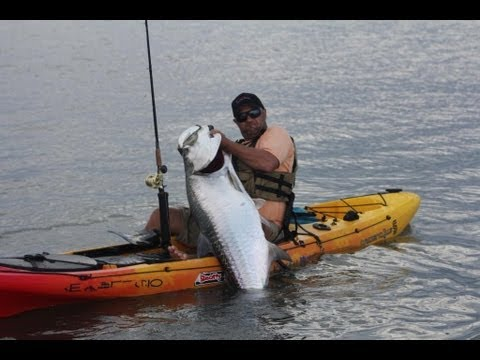 Kayaker Catches Huge Tarpon
