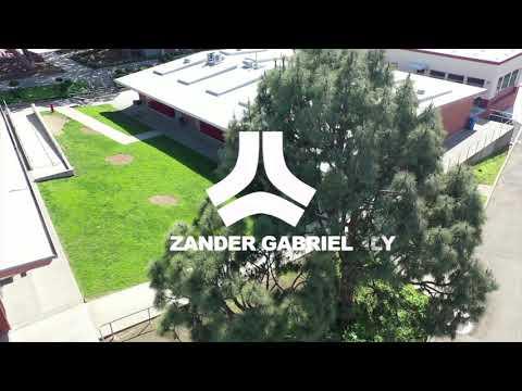 Zander Gabriel x Welcome  to Destructo