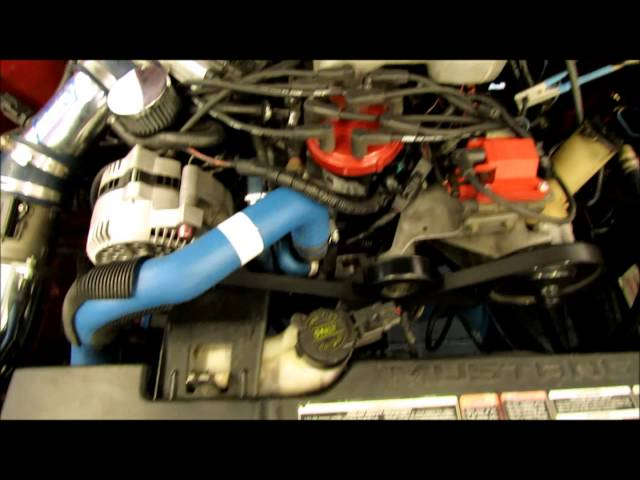 Borelli Motor Sports: 1995 Mustang GT w/bolt-on's(291rwhp/326rwtq)