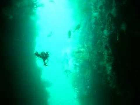 伊豆 雲見で洞窟探検スキューバダイビング