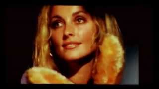 Sharon Tate ~ Dream a little dream of me