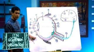 ITN Television Iskole - (2020-03-31) | ITN