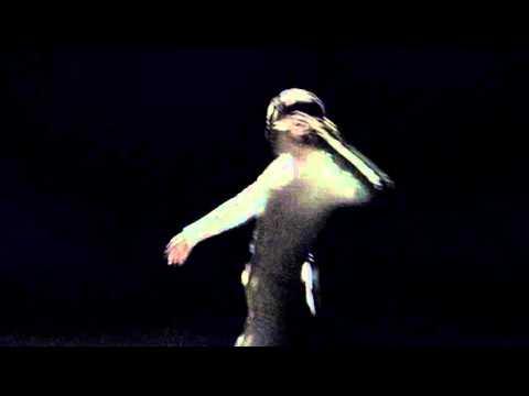 D.A.N. Native Dancer music videos 2016